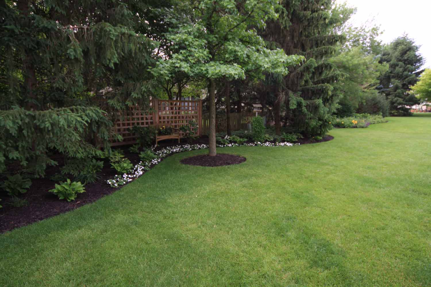 Landscape Maintenance by Wood Landscape